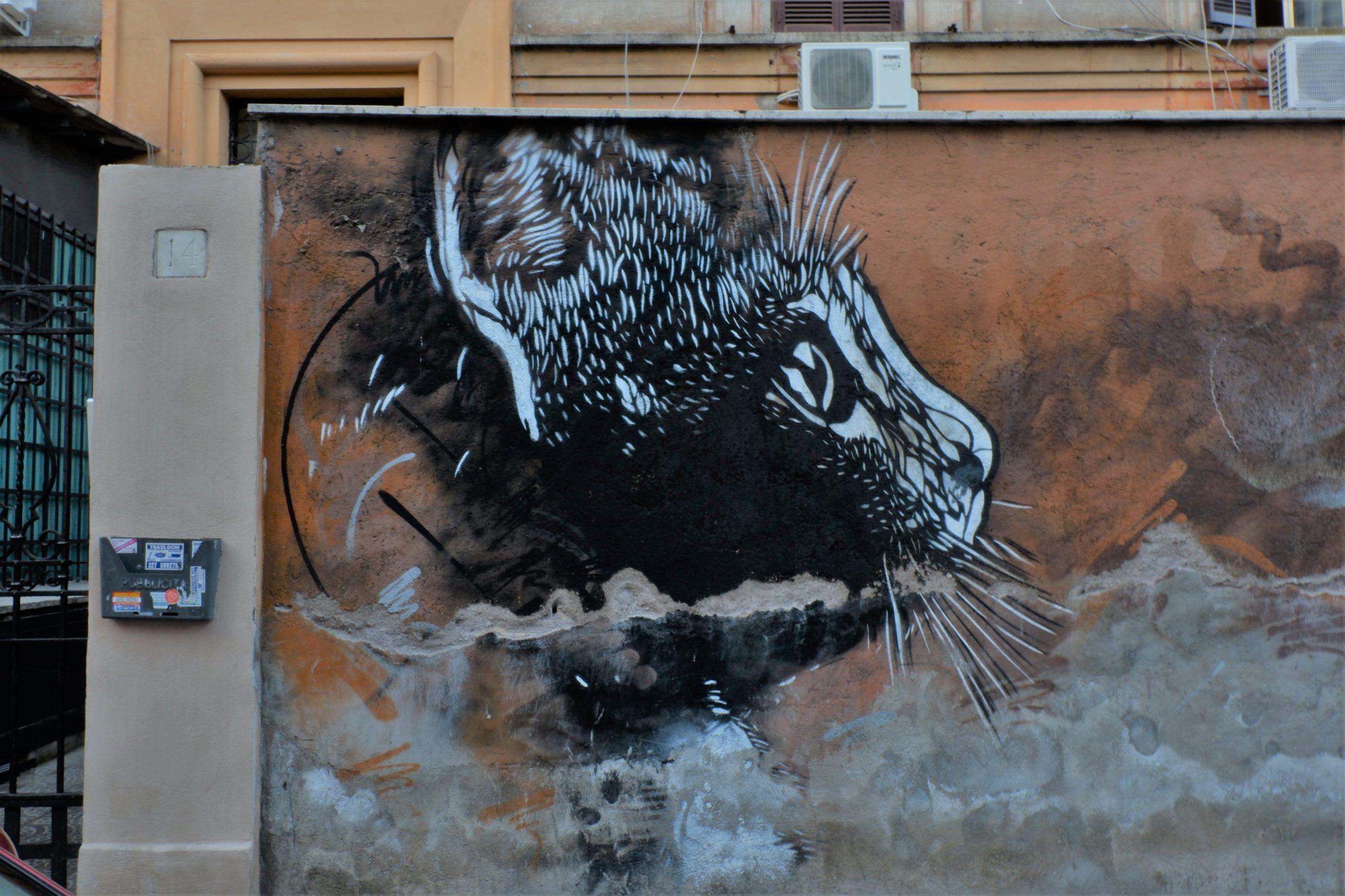 c215 tor pignattara roma street art